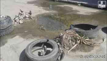 Aragua | Seis años entre aguas residuales tienen vecinos de Palo Negro - El Pitazo