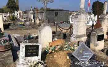 Confinement en Lot-et-Garonne : le cimetière de Tonneins va rouvrir ses portes ce lundi 27 avril - Sud Ouest