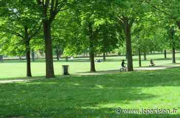 Aulnay-sous-Bois : le violeur du parc du Sausset interpellé après une nouvelle agression - Le Parisien