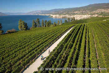 Naramata Bench: Beautiful views and fantastic wineries - Pentiction Western News
