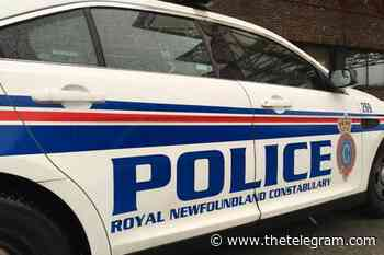 Man arrested in Conception Bay South after alleged disturbance - The Telegram