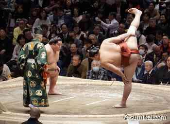 Knebelskandal im Sumo – Zeit, die Konsequenzen zu lockern - Sumikai