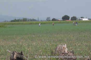 Ejidatarios buscan regularizar uso de zona federal del Lago de Chapala - La Voz de Michoacán