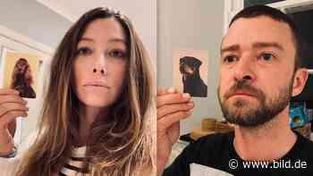 Justin Timberlake und Jessica Biel finden ihre Hunde-Doppelgänger - BILD