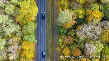 Waldbrandgefahr in Brandenburg steigt etwas - Süddeutsche Zeitung