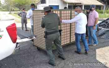 Trasladan especies confinadas en el Zooparque Los Caimanes de Córdoba - El Heraldo (Colombia)