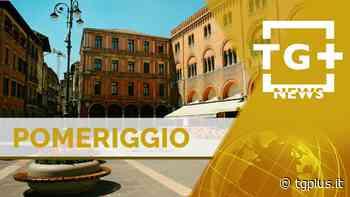 Fase due, appello di Stefano Marcon – TG Plus NEWS - Tg Plus