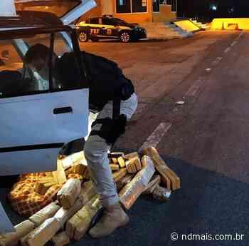 Mais de 80 kg de maconha são apreendidos em Barra Velha - ND - Notícias