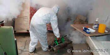Confirman siete casos de dengue en San Pedro de Lloc - La Industria.pe