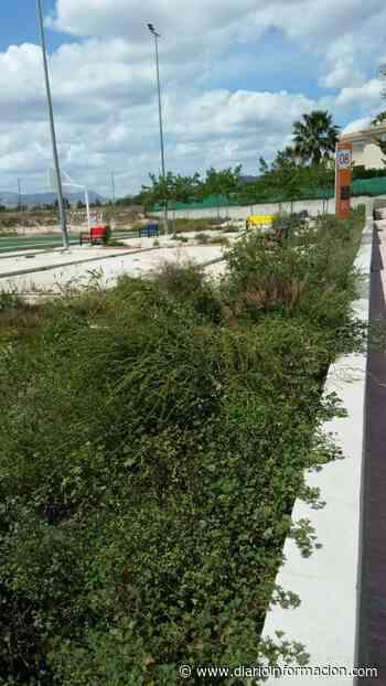 """Los vecinos de Villamontes denuncian """"abandono"""" y una situación """"límite de insalubridad"""" - Información"""