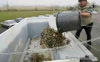 Tarnos : la collecte des déchets verts reprend - Sud Ouest
