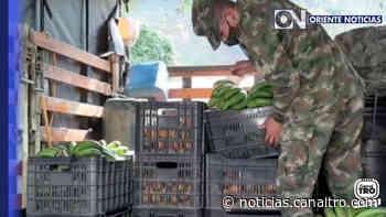 Ejército Nacional apoya a campesinos en Cucutilla - Canal TRO