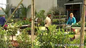 """Tuincentrum is slachtoffer van eigen succes: """"Bijna niets kunnen aanvullen door de drukte"""""""