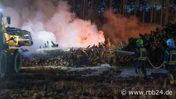 Feuerwehr löscht erneut Waldbrand im Wald bei Wandlitz - rbb|24