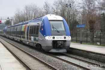 Seine-et-Marne. La ligne P interrompue entre Lizy-sur-Ourcq et La Ferté Milon ce mardi après-midi   La Marne - actu.fr