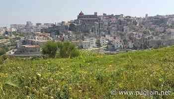 Vico del Gargano, suolo pubblico gratis per aiutare le attività - Puglia In
