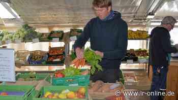 Ernährung: Lausitzer fahren auf die Biokiste aus Kolkwitz ab - Lausitzer Rundschau