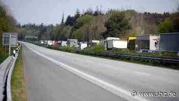 Zwei Rehe erschossen: A7 zwischen Flensburg und Harrislee wieder freigegeben   shz.de - shz.de