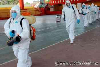 Confirman caso de dengue en Oxkutzcab - El Diario de Yucatán