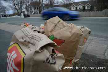 Yard waste collection suspended in St. John's, Mount Pearl, C.B.S. - The Telegram