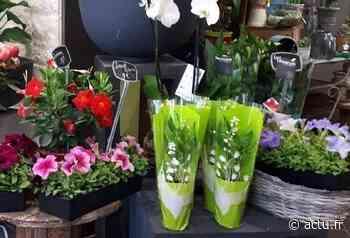 Aux Andelys, dans l'Eure, les fleuristes mettent en place des drives pour vendre leur muguet - Normandie Actu