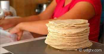 PROFECO pacta resguardo de precios con tortilleros de Lagos de Moreno - UDG TV