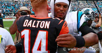 Andy Dalton Joins Crowded N.F.L. Free Agent Pool