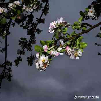 April geht feucht und unbeständig zu Ende - RND
