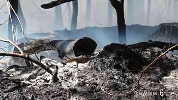 Waldbrand nahe Munitionsgelände bei Feucht - BR24
