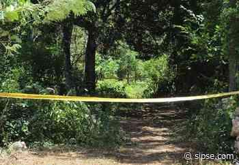 Peto: encuentran muerto a un hombre que había desaparecido hace 10 años - sipse.com
