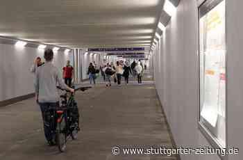 Straßenmusiker in Bietigheim - Sicherheitsleute mit Trommel geschlagen - Stuttgarter Zeitung