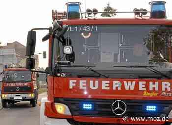 Brandstiftung: Wiese brannte in Fredersdorf-Vogelsdorf - Märkische Onlinezeitung