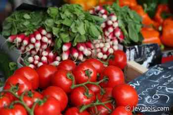 Le Jardin du Primeur - Livraison de Fruits et Légumes à Cogolin - LeVarois