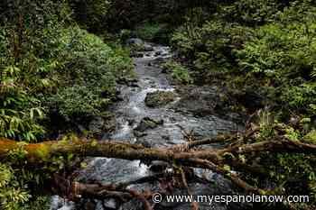 Heavy Rainfall Warning – Elliot Lake, Blind River, Espanola, Manitoulin Island - My Eespanola Now