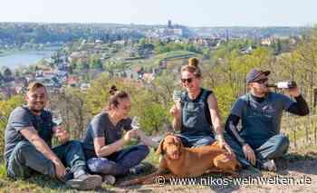 Weingut Schuh bei Meissen in Sachsen: #helfenbeifreunden - Gourmetwelten