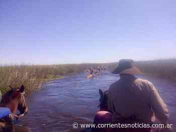 En plena cuarentena, pobladores aislados por cierre de tranqueras en una localidad correntina - Corrientes Noticias