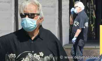 Martin Sheen takes break from quarantine and wears mask and gloves for trip to buy lunch in Malibu - Daily Mail