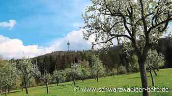 Dotternhausen - Blüten – ein Genuss für Körper und Seele - Schwarzwälder Bote