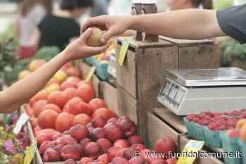 Gorgonzola, con la fase 2 torna il mercato del lunedì - Fuoridalcomune.it