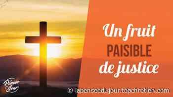 Un fruit paisible de justice de Jean-Louis Gaillard - La Pensée du Jour - Top Chrétien