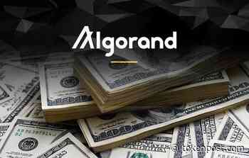Algorand Foundation launches $250M ALGO Grants Program to foster blockchain development - TOKENPOST