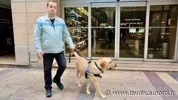 «Il est mes yeux, mon compagnon» : à Isbergues, l'animateur de Banquise FM perd son chien-guide - La Voix du Nord