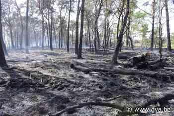 Beschadigd natuurgebied De Liereman is opnieuw toegankelijk ... (Oud-Turnhout) - Gazet van Antwerpen