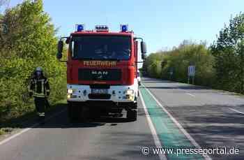 FW Altenberge: 21.04.2020 Baum_Straße/Verkehrsstörung auf B54 - Presseportal.de
