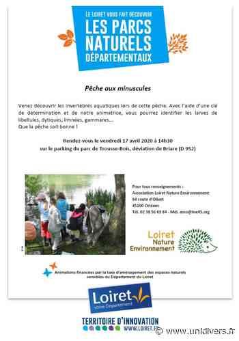 Pêche aux minuscules Parc Naturel Départemental – Trousse-Bois 17 avril 2020 - Unidivers