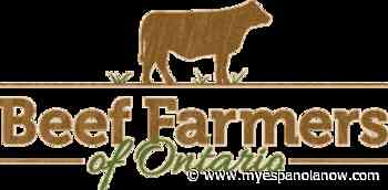 Ontario beef farming industry in crisis because of COVID-19 - My Eespanola Now