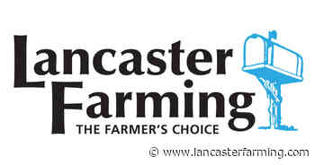 Cooking at Home | Food & Recipes from the Farm - Lancaster Farming