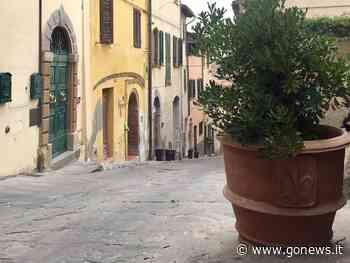 """Fase 2, CCN Castelfiorentino: """"Interventi con finanziamenti a fondo perduto"""" - gonews"""