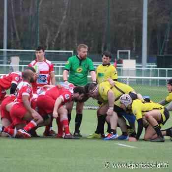 Rugby – Fédérale 3 – Retour aux sources pour le MLSGP 78 et Clamart Rugby 92 - SportsCo IDF