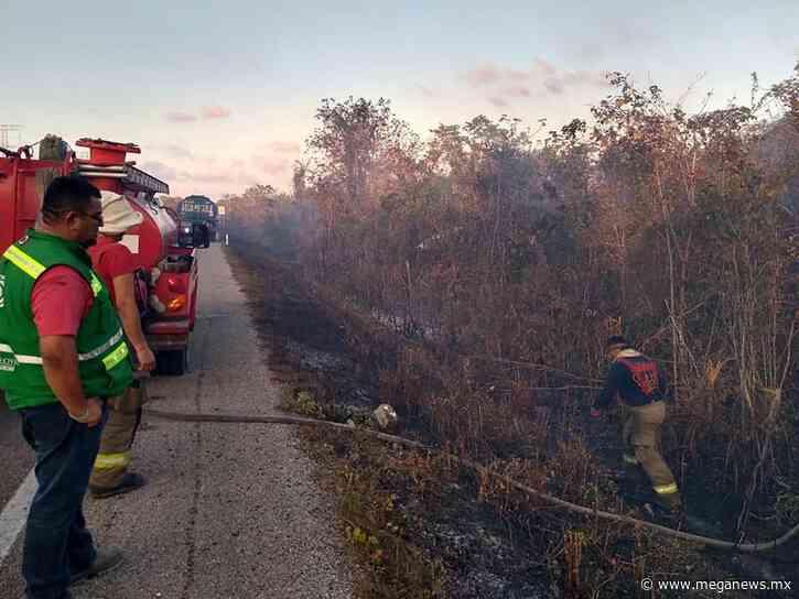 Se extiende 300 hectáreas más el incendio de Ichkabal en Bacalar - Meganews